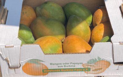 Die Mangos sind da